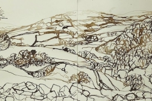 6-Dale-looking-towards-Thackmoor-29cm-x-83cm-Ink-on-paper