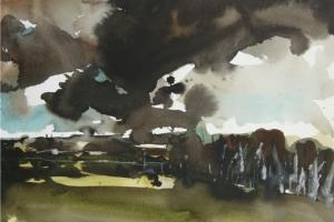 landscapes-25